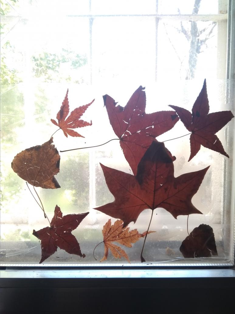 agroarte vidriera hojas de otoño